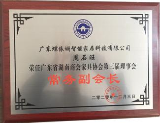 蝶依斓-三届连任广东省湖南家协常务副会长